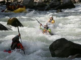 Kayak_Ayas_Patta Libra (1)