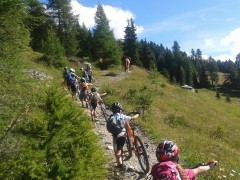 Mountain Bike_Ayas_Patta Libra (3)